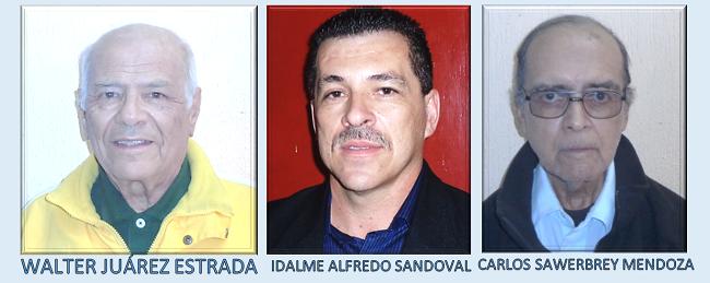APG TRIBUNAL DE ELECCIONES 2015.